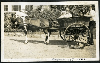 Gwen Ketchum in a horse pulled carriage with her father and grandfather