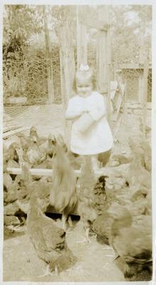 Gwen Ketchum feeding chickens